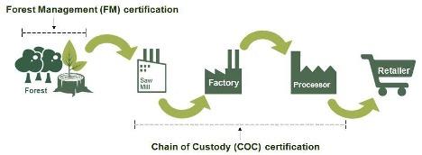FSC and COC Flow Chart | Royal Labe l